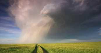 Entenda como o clima influencia a agricultura