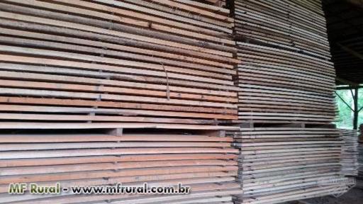Guia, Tabua, Prancha, Madeira Serrada Pinus e Eucalipto, Exportação, Construção Civil e/ou Industria