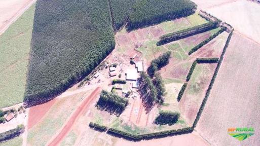 Fotos para venda de Sítios e  Fazendas