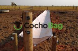 COCHO PARA GADO