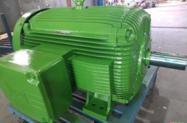 MOTOR WEG W21 300CV 1100RPM 380/660V IP55 60HZ