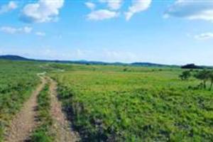 Vende-se fazenda no Amajari, com 2775 hectares, a 11 km da cidade, de frente para o asfalto