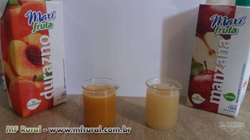 Projetos/Consultoria fábrica sucos e smoothies
