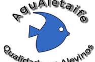 Vendas de peixes de água doce para todos os gostos