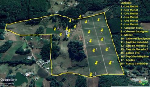 Vinícola em Fazenda Souza (RS) com 47 hectares
