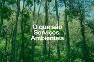Licenciamento e Estudos Ambientais