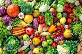 Compro  direto do produtor cebola /batata / legumes e frutas