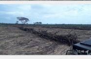 Fazenda em Sapezal MT
