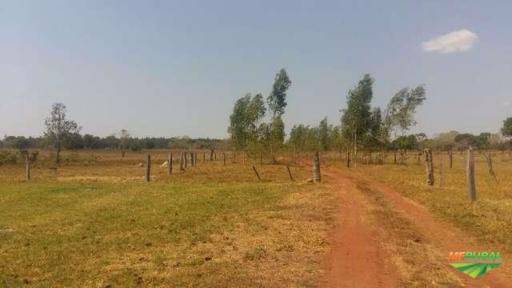 Fazenda Centro Oeste - Municipio de Barra do Garcas-MT. 99.08 Hectares com 03 Nascentes