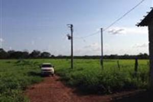 Fazenda em Balsas 732ha a 20km da cidade