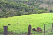 Procuro Fazenda de 2000