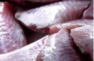 Peixe Porquinho Limpo