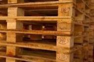 Paletes madeira novos