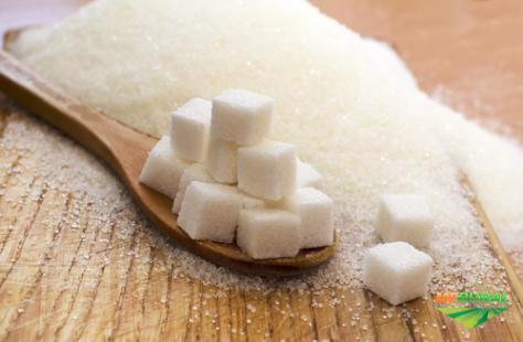 Açúcar Cristal, Açúcar Cristal VHP, Levedura