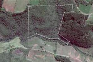 Área De Terra Para Reflorestamento