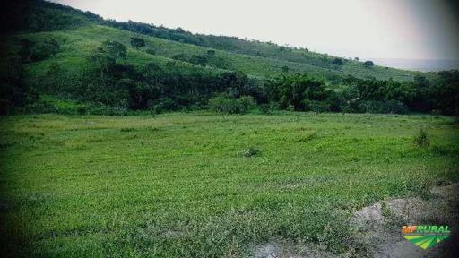 Fazenda Três Irmãos em Campo do Meio 26 Alqueires