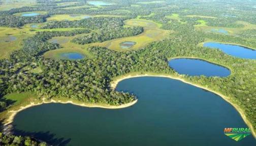 Fazenda no Alto Pantanal de Mato Grosso - 120.000 Has - Aceito Proposta