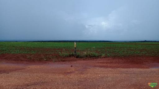 Ultima Oportunidade de Fazenda na regiao