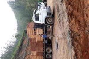 Vendo madeiras serrada de pinus e eucalipto