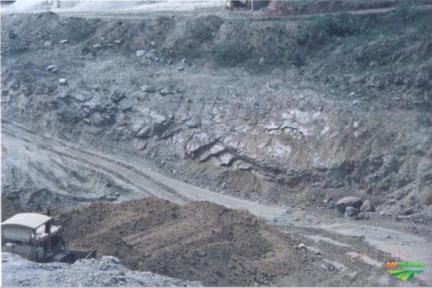 Sociedade em Agronegócio e Mineradora