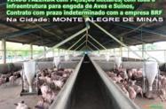 FAZENDA MONTE ALEGRE DE MINAS