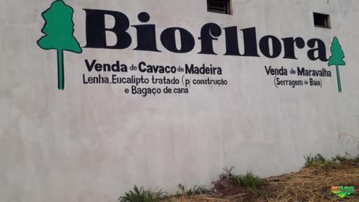 CAVACO DE MADEIRA  /  MARAVALHA  /  LENHA