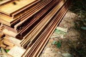 madeira  legalizadas