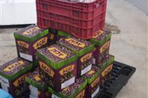 Caixa 10 litros açaí /creme com frutas naturais