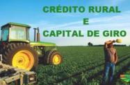 Capital de Giro e Crédito Rural