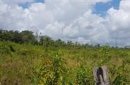 Fazenda Região Nordeste do