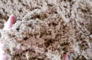 Torta de Algodão 28% a 34% de Proteína