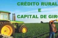 Linha de Créditos Agrícolas