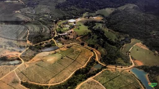 Fazenda em  Ilhéus 1007 ha