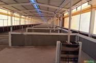Estrutura pré-moldada para Barracão, Pocilga, Chiqueiro, Aviário, Compost barn e Living stock