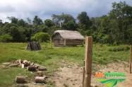 Vendo Fazenda com 9650 hectares de mata a 100 km de Rio Branco -Acre
