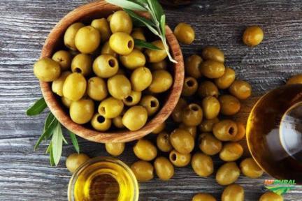 Venda de conservas: champignon / azeitonas / pepino / picles / cebolinha / alcaparra/tomate seco etc