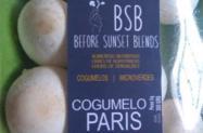 Cogumelo Paris-Champignon