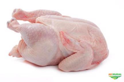 Compro frango carcaça (1.4 até 1.8kg)