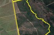 Fazenda São Simão 320 ha para Jazida de Turfas/Areia/Argila