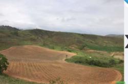 Fazenda de 143 hectares à venda