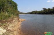Fazenda de Eucalipto CLoesiana-352 hectares-161 ha licenciados- 90 ha plantados - Olhos D`Água MG