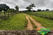 Fazenda Beira do Rio Maranhão em Goiás