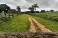 Fazenda Beira do Rio