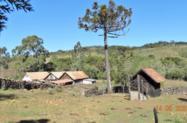 Fazenda 140 hectares na Serra Catarinense- Com casa Sede antiga e casa para capataz