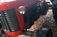 Trator Massey Ferguson 65