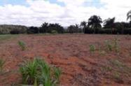 Chácara 2 hectares a 40