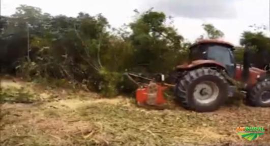 Serviços Triturador Picador Florestal Locacao Limpeza de Áreas Supressão Vegetal Destocador e Tocos