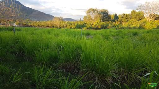 Sítio Irrigado Próximo ao Centro de Jequié com 40.000 m2