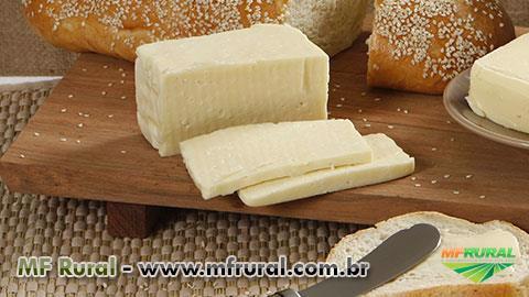 Curso Online Produção de Manteiga, Coalhada e Requeijão em Barra