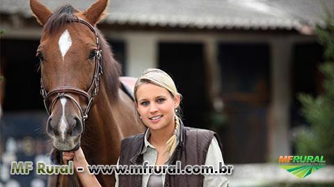 Curso Online Enquanto o Veterinário Não Chega - Atendimento a Equinos